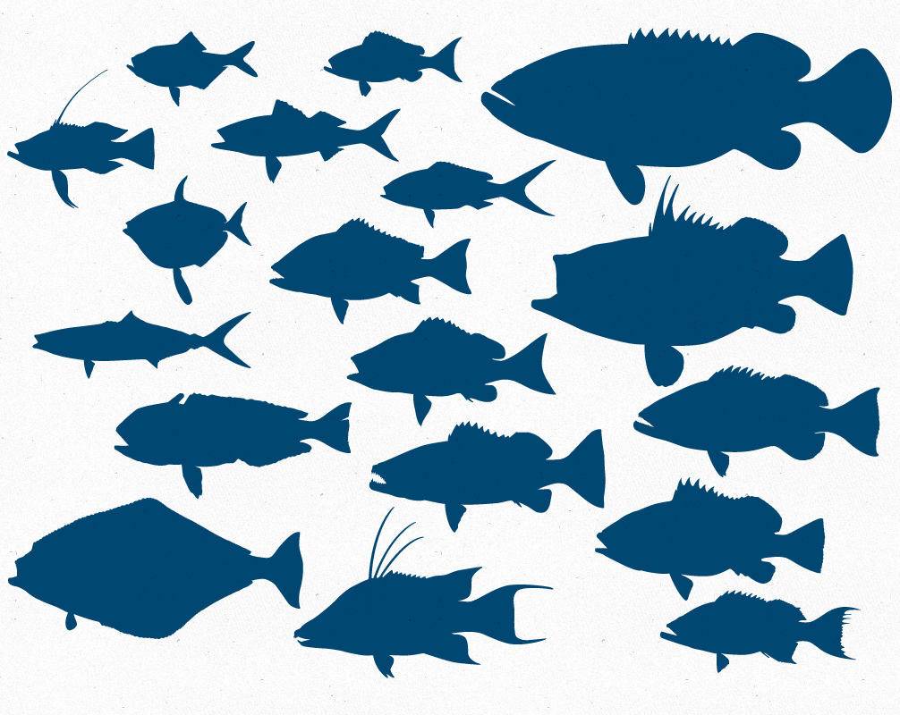 Free Vector deep sea reef Fish