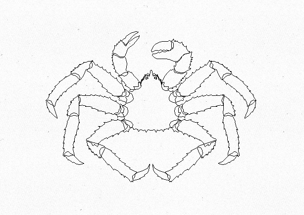 Free Vector Crab Illustrations