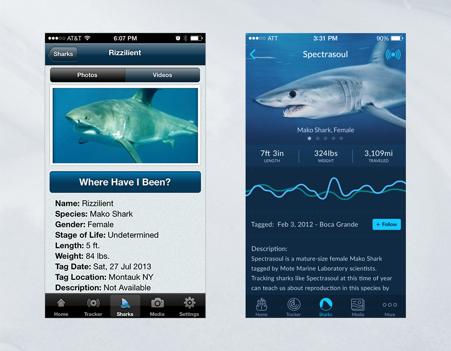 Shark Tracker iOS App - Comparison of Shark Details Page