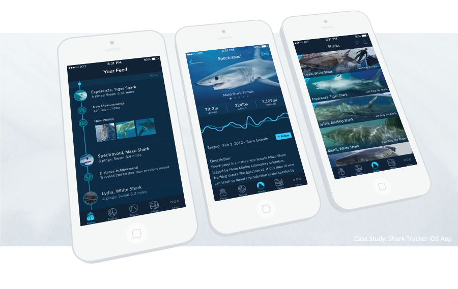 Shark Tracker iOS App