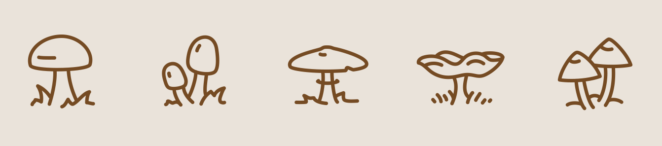 autumn-mushrooms-2