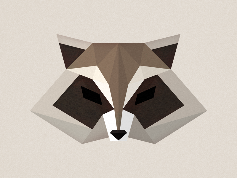 raccoon-head
